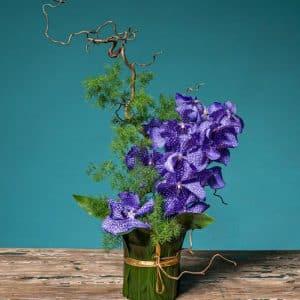 composicion orquídea morada