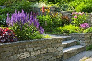 diseño de un jardin sostenible